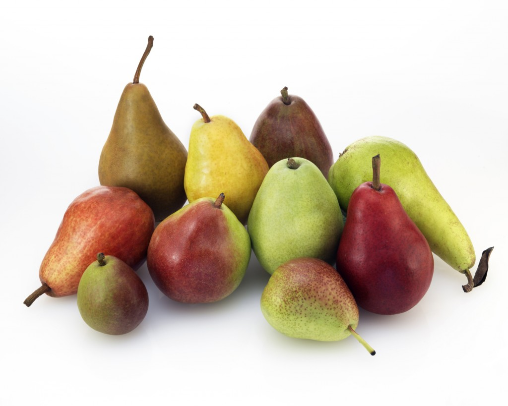 Ten Varieties of USA Pears