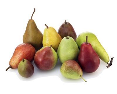 Ten Varieties of USA Pears KO sm