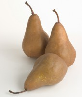 champagne-pears