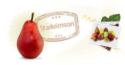 starkrimson