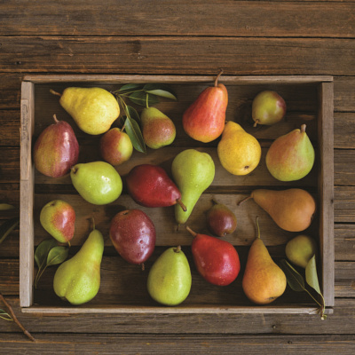 pear varieties list guide to ten pear types usa pears